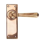 #06 - Orleans Lever Door Handle on Latch Backplate