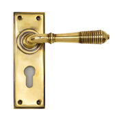 #13 - Marot Lever Door Handle on Euro Lock Backplate